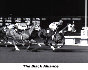 The Black Alliance